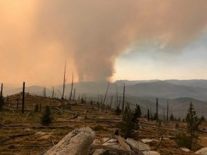 Bearskin Fire seen from Bear Valley 2017